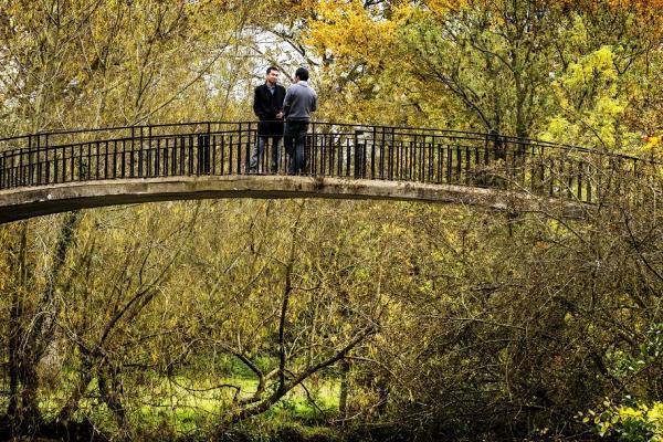 High Bridge, Oxford University Parks
